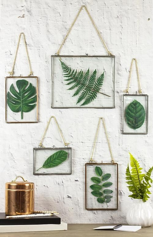 nature wall gallery